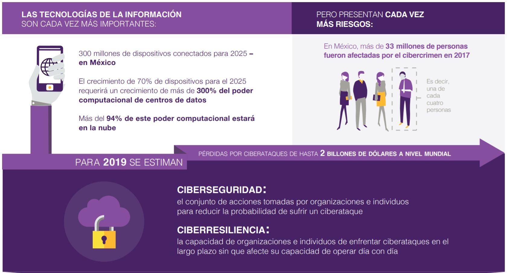 Personas afectadas en México por el cibercrimen
